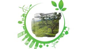 Изграждане култура за устойчивост