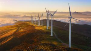 Защо социалната отговорност и устойчивото развитие са новите двигатели за растеж
