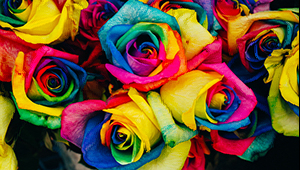 Blooming Color: впечатляваща оптимизация с HP Indigo EPM